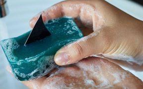 Lush Shark Fin Soap landscape cropped